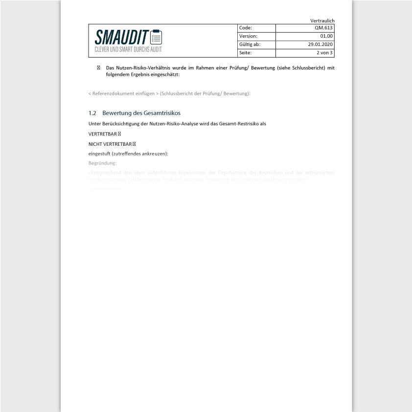 QM.613 - F&T Risikomanagementbericht - SMAUDIT - DIN EN ISO 9001