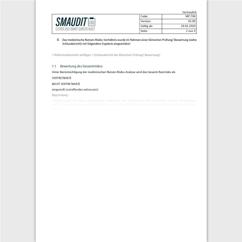 TD.704 - F&T Risikomanagementbericht - SMAUDIT - Technische Dokumentation